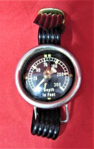 Depth/Compass Gauge